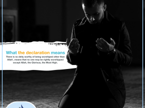 What the declaration means