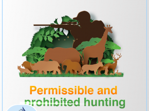 Permissible and prohibited hunting