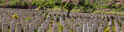 Burial of Muslims in Non-Muslim Graveyards