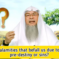 Are the calamities that befall us due to pre-destiny or our sins?