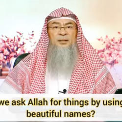 Can we ask Allah for things by using His beautiful names?