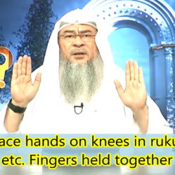 ​How to place hands on knees in Ruku Sujood, Tashahhud, etc. Fingers held together or apart?
