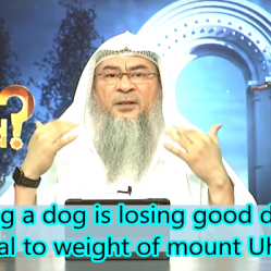 Having a dog is losing good deeds everyday equal to the weight of mount uhud