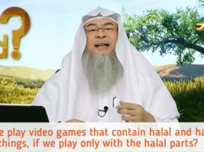 Playing video games that has halal & haram things