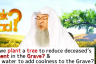 Can we plant a tree to reduce torment of grave & Pour water for coolness of the grave
