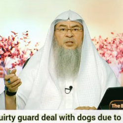 Can a security guard deal with dogs due to necessity?