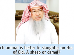 Which animal is better to sacrifice for Eid (Qurbani/ Udhiyah)