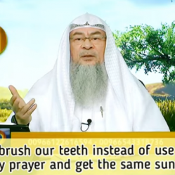 Can we brush our teeth instead of use Miswak before prayer & get same Sunnah reward?
