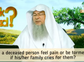 Will a deceased person feel pain or be tormented if we cry or wail when he dies?