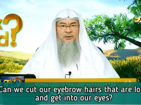Can we cut our eyebrow hairs that are long & get into our eyes?