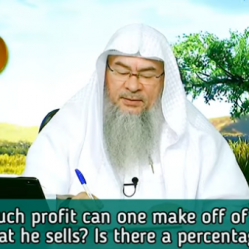 How much profit can one make when selling an item? Is there a certain percentage?