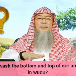 Should we wash the bottom & top of our arms & feet in wudu?