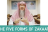 The five forms of Zakat
