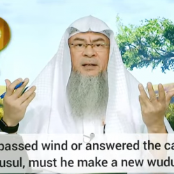 If one passes wind or urinates during ghusl, must he redo ghusl or redo the wudu?