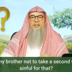 Advised my brother not to take a second wife, am I sinful?