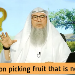Ruling on plucking fruit that is not ours
