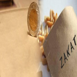 Types of Zakat